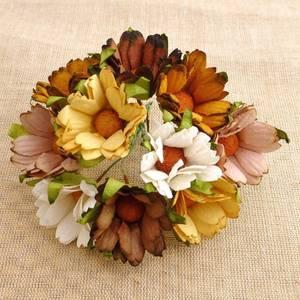 Bilde av Flowers - Chrysanthemums - SAA-326 - Mixed Earth Tone - 50stk