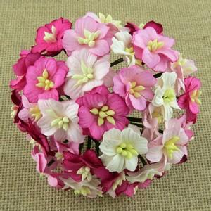 Bilde av Flowers - Apple Blossom - Saa-417 - Mixed Pink - 50stk