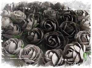 Bilde av Papirdesign - Pion, grå