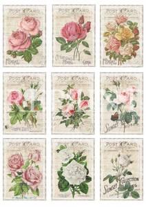 Bilde av Reprint -  A4 Klippeark - KP0063 - In the Garden - Roses