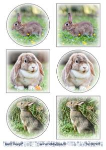 Bilde av Barto Design - Klippeark A4 - 067903 - Bunnies