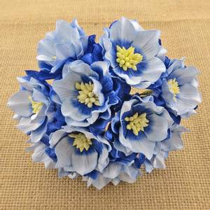 Bilde av Flowers - Lotus - SAA-107 - 2-Tone Sapphire Blue - 25stk