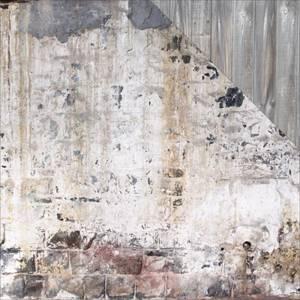 Bilde av Kaisercraft - P2303 - 12x12 - Basecoat 4 - Backyard Fence